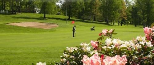 golf-club-le-betulle-pink-club-biella24