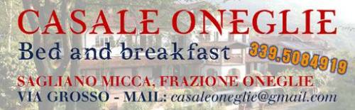 casale-oneglie-bed-and-breakfast-biella24