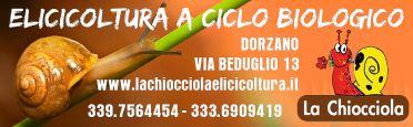 la-chiocciola-biella24