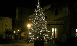 cossato-albero-natale-costoso-biella24