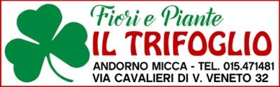 speciale-ferragosto-trifoglio-biella24