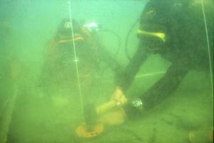 1-viverone-ricerca-subacquea