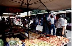 vigliano-mercato-biella24