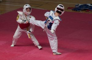 taekwondo-white-fox-genova-biella24