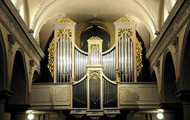 vigliano-organo-assunta-biella24