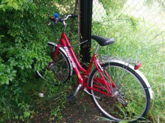 mongrando-bici-abbandonata-biella24