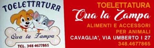 reclame-qua-la-zampa-cavaglià-biella24