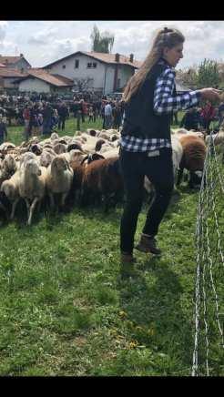 ponderano-27-festa-agricola-19-biella24-009