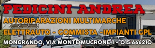 reclame-pedicini-biella24