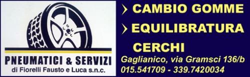 reclame-pneumatici-servizi-biella24