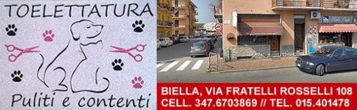 reclame-puliti-contenti-biella24