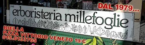 reclame-millefoglie-biella24