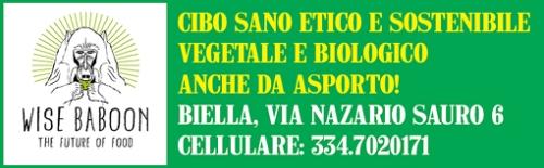 reclame-wise-baboon-biella24