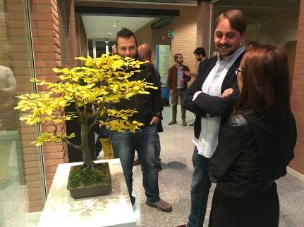 mostra bonsai città studi