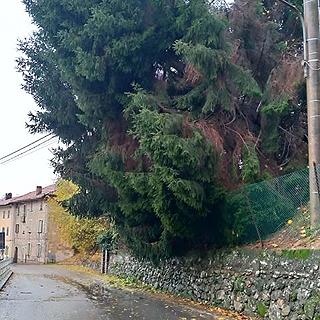 maltempo-2019-bioglio-biella24-006